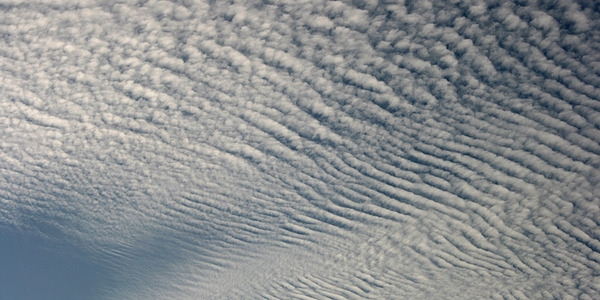 Altocumulus clouds.