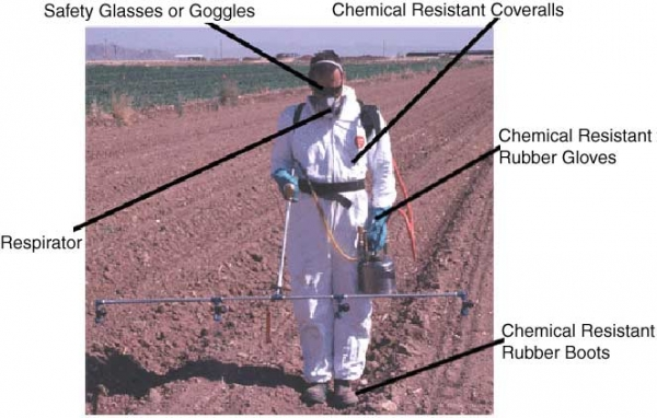 Safe chemical use. Image credit arizona.edu