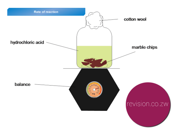 Rates of Chemical Reactions