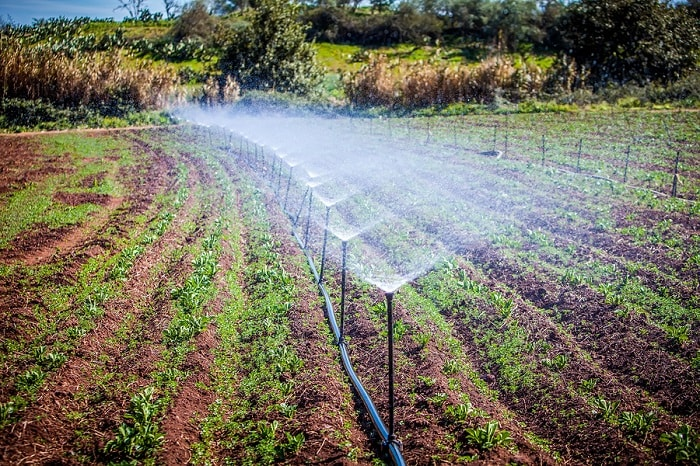 Types Of Irrigation Free Zimsec Revision Notes And Past